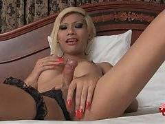 Breasted Ladyboy Patty Gets Very Horny 2